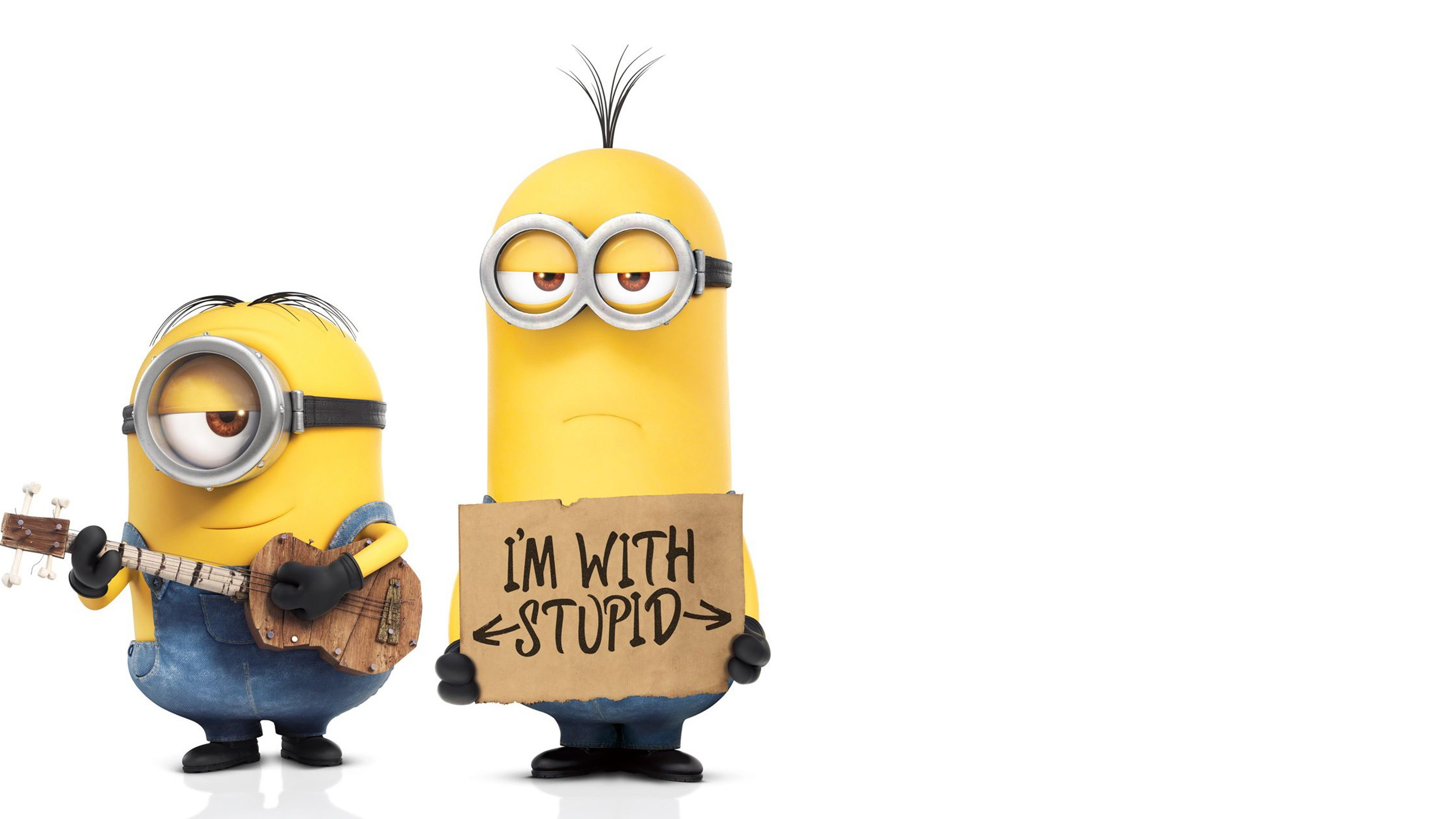 Minions - You can be with stupid